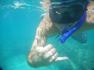 islamorada snorkel tour clearly unique